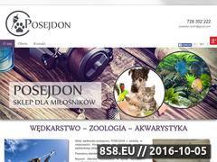 Miniaturka domeny www.posejdon-konin.pl