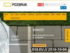 Miniaturka domeny pozbruk.pl