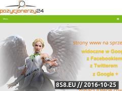 Miniaturka domeny www.pozycjonerzy24.pl