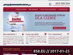 Miniaturka domeny www.pozycjonowanie-stron.pro