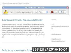 Miniaturka domeny www.pozycjonowanie-wszczecinie.pl