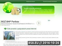 Miniaturka domeny www.pozyczkagotowkowa.net