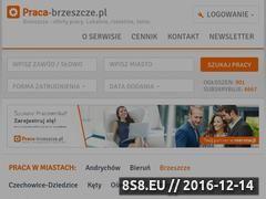 Miniaturka domeny www.praca-brzeszcze.pl