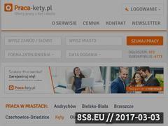 Miniaturka domeny www.praca-kety.pl