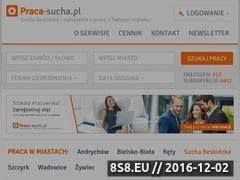 Miniaturka domeny www.praca-sucha.pl