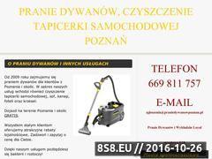 Miniaturka domeny praniedywanowpoznan.pl