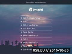 Miniaturka domeny premiumbaits.com