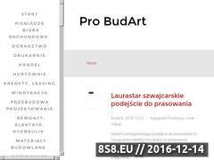 Miniaturka domeny www.pro-budart.pl