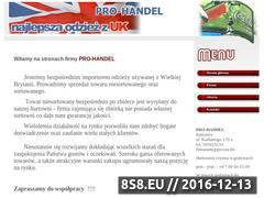 Miniaturka domeny pro-handel.pl