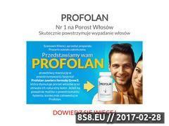 Miniaturka domeny www.procerin.pl