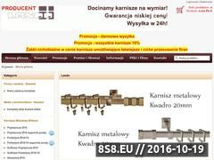 Miniaturka domeny producent-karniszy.pl