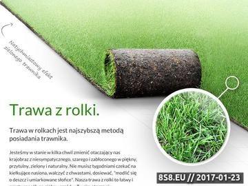 Zrzut strony Krzysztof Perz - producent trawy