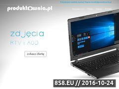 Miniaturka domeny www.produktownia.pl