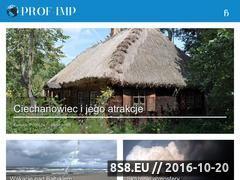 Miniaturka domeny prof-imp.pl