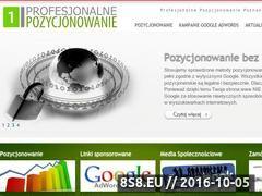 Miniaturka domeny profesjonalne-pozycjonowanie.pl