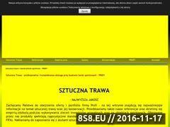 Miniaturka Profi - budowa boisk ze sztucznej trawy (www.profi.wroclaw.pl)