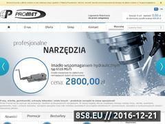Miniaturka domeny promet.net.pl