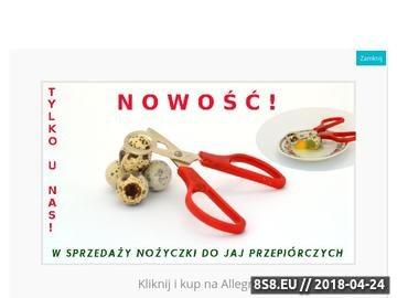 Zrzut strony Przepiórki