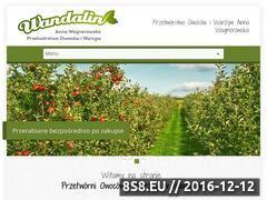 Miniaturka domeny przetworniawandalin.pl
