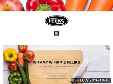 Zrzut strony Przetwórstwo warzyw, sałatki warzywne i ogórki konserwowe FELIKS