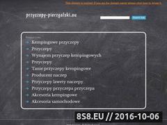 Miniaturka domeny www.przyczepy-pierzgalski.eu