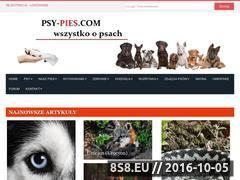 Miniaturka domeny psy-pies.com
