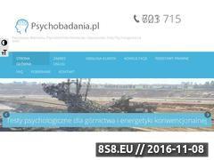 Miniaturka domeny www.psychobadania.pl