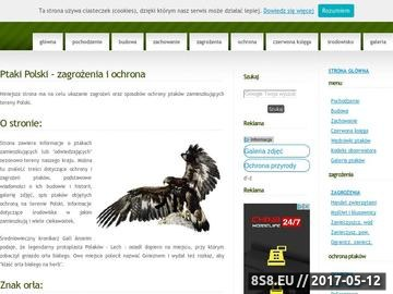Zrzut strony Ptaki Siedliska