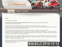 Miniaturka domeny www.pts.twardak.com