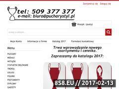 Miniaturka domeny pucharystyl.pl
