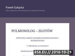 Miniaturka domeny pulmozlotow.pl