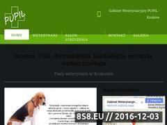 Miniaturka domeny www.pupilkrakow.pl