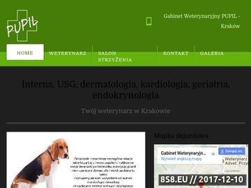 Zrzut strony Weterynarz Kraków