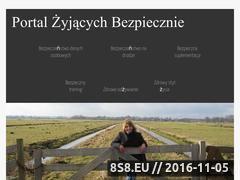 Miniaturka domeny www.pzb.net.pl
