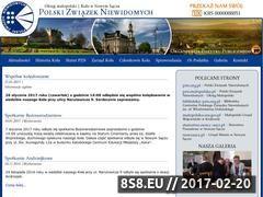 Miniaturka domeny pzn-nowysacz.pl