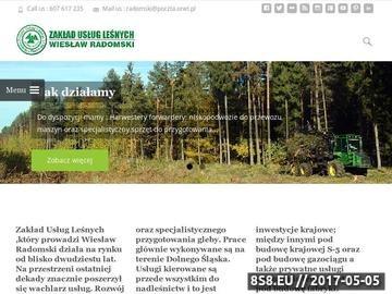 Zrzut strony Wiesław Radomski zrywka drewna