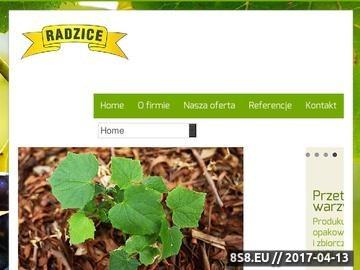 Zrzut strony Producent przetworów owocowo-warzywnych, Agro-Transpol