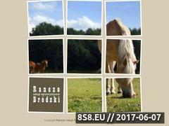 Miniaturka domeny www.ranczo-brodzki.com.pl