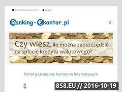 Miniaturka domeny ranking-ekantor.pl