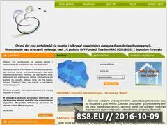 Miniaturka domeny www.raporty-spalania.pl