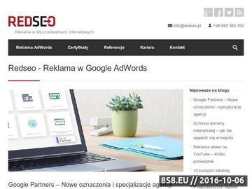 Zrzut strony RedSEO - Profesjonalne usługi SEO
