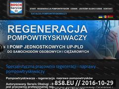 Miniaturka domeny regeneracja-pompowtryskiwaczy.pl