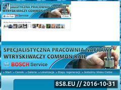 Miniaturka domeny www.regeneracjanaprawawtryskiwaczy.pl