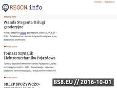 Miniaturka domeny regon.info