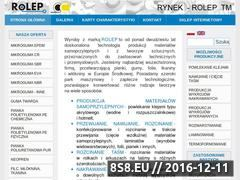 Miniaturka domeny rolep.pl