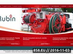 Miniaturka domeny www.rubin.waw.pl