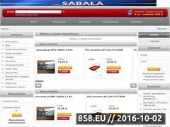 Miniaturka domeny www.sabala.eu