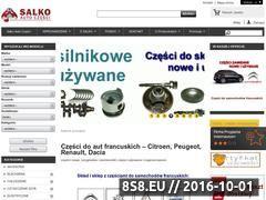 Miniaturka domeny salko.pl