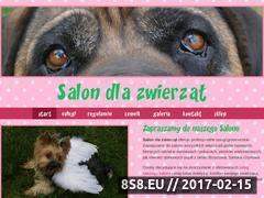 Miniaturka domeny salondlazwierzat.com