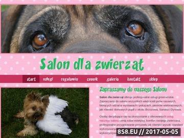 Zrzut strony Salon dla psów Sanok